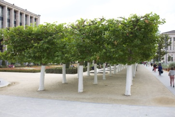 University Walkway